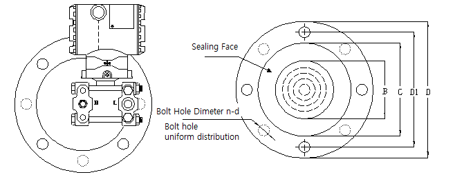 Flange Specification of Capacitance Level Transmitter